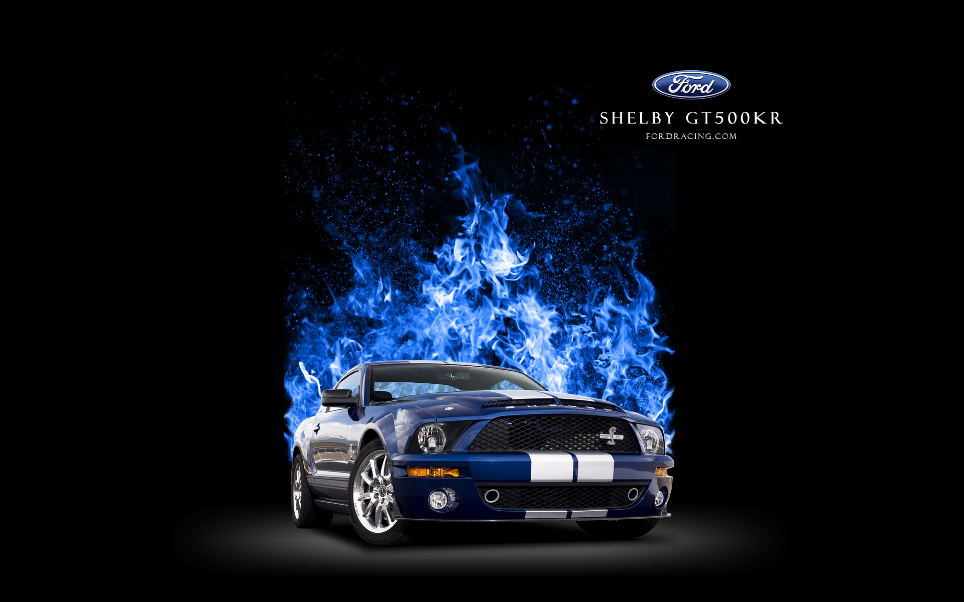 Facts as well Watch likewise Shelby Cobra Wallpaper together with 2015 Ferrari Laferrari Hq Autospoiler  ment 951936 further 287841. on 1967 shelby gt500